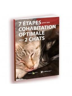 Programme cohabitation 2 chats