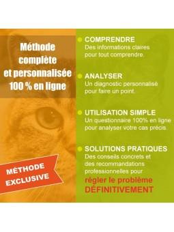 Solution rapide pas cher pour stopper urines hors-litière chat : recommandations personnalisées