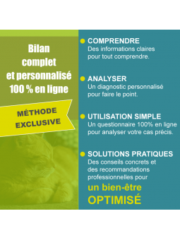 Bilan comportement chat améliorer bien-être